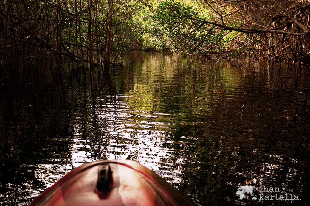 everglades-kanootissa.jpg
