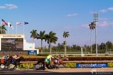 Gulfstream Park, Florida