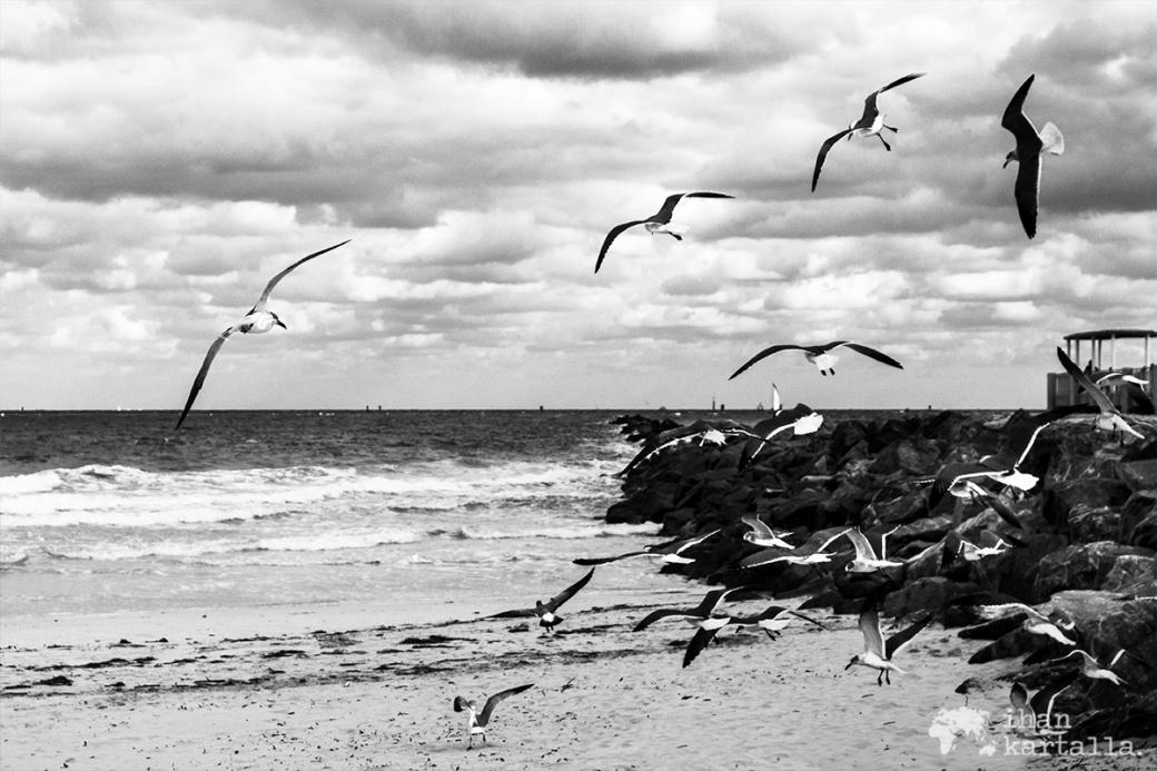 miami-beach-lokit.jpg