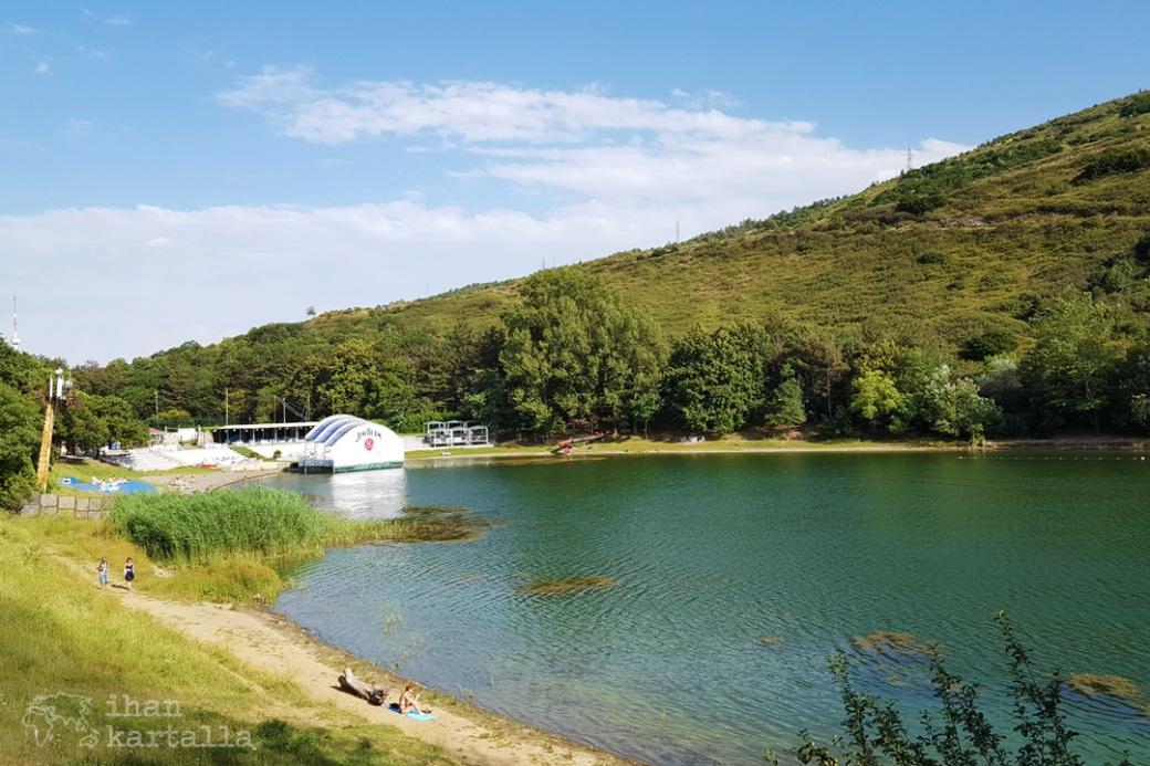 turtle-lake.jpg