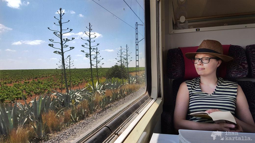 29-5 junassa