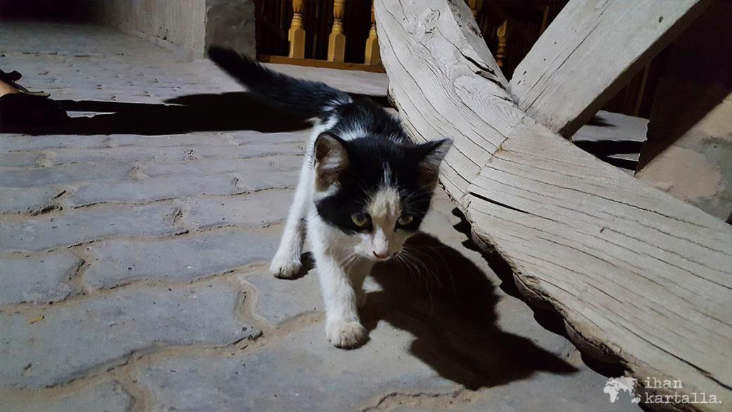 5-7 uzbekistan khiva kissa