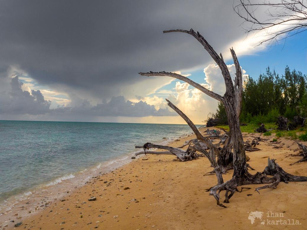 1-9-bahama-coral-harbour-ranta