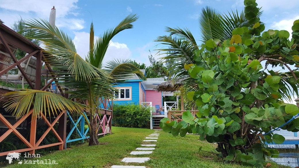 1-9-bahama-piha
