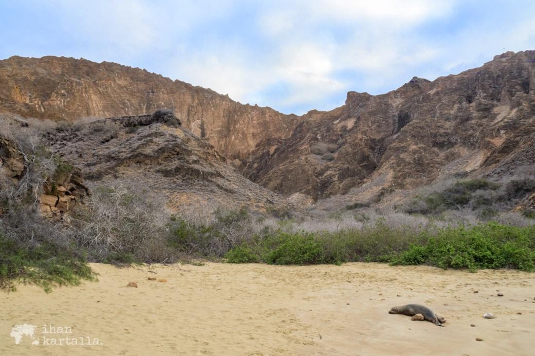 11-9-galapagos-punta-pitt-beach2