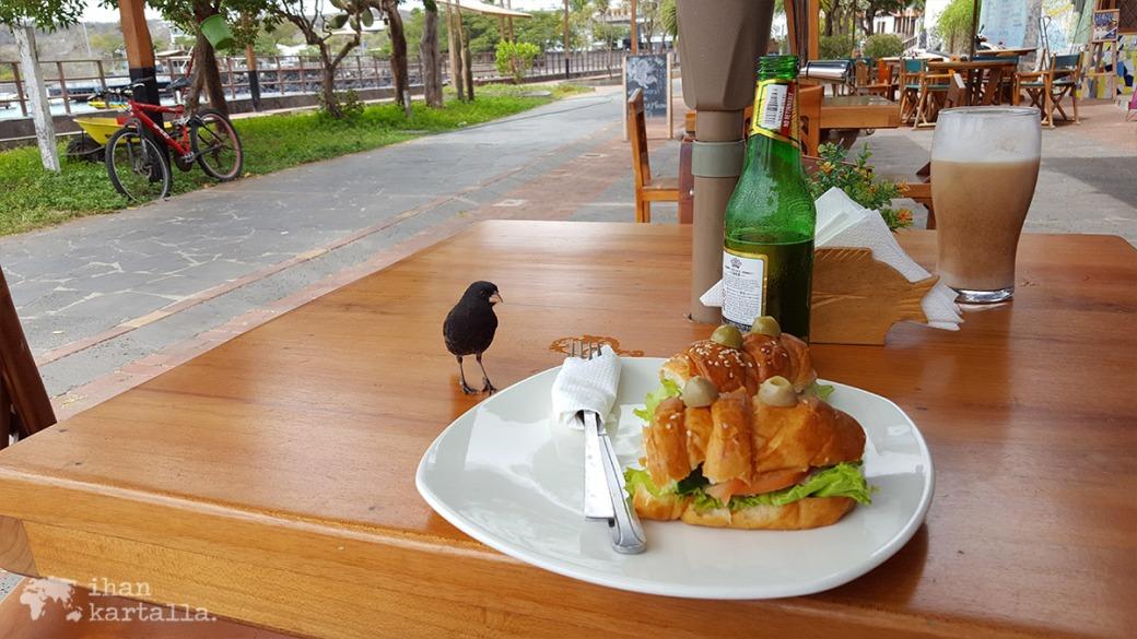 12-9-galapagos-puerto-baquerizo-moreno-lunch