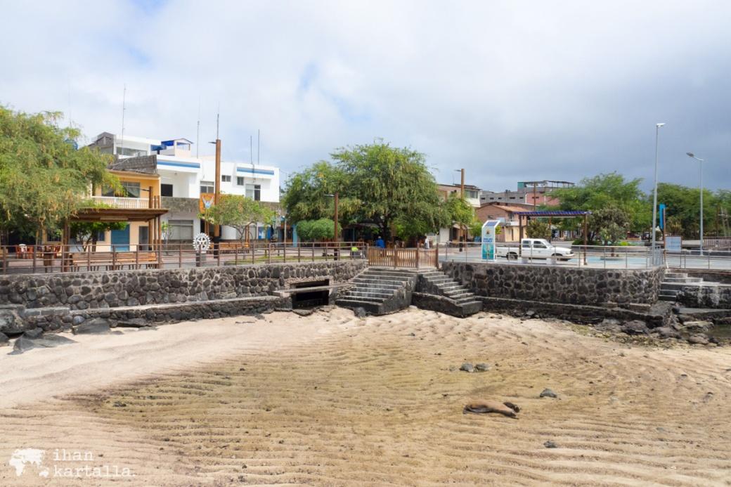 12-9-galapagos-puerto-baquerizo-moreno1