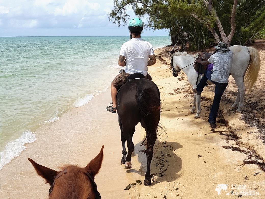 3-9-bahama-ratsastus-ranta