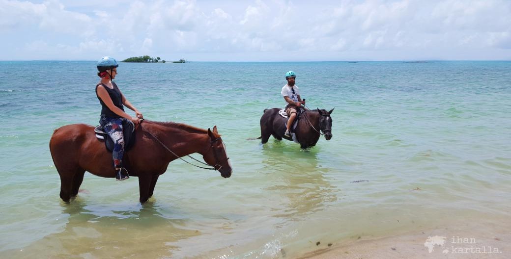3-9-bahama-ratsastus-banneri
