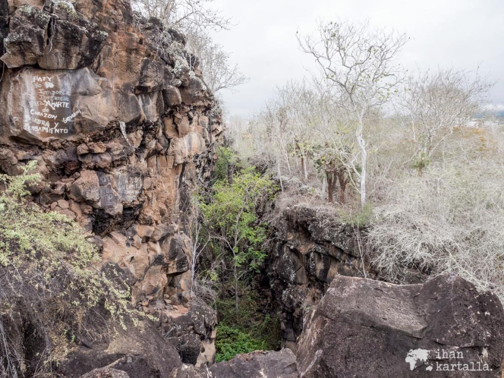 7-9-galapagos-rocks-tortuga-bay