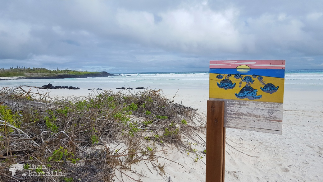 7-9-galapagos-sign-tortuga-bay