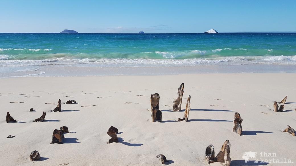 8-9-galapagos-santa-cruz-bachas-beach-pier