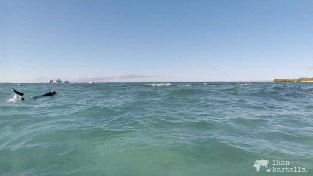 8-9-galapagos-santa-cruz-bachas-beach-snorkeling4