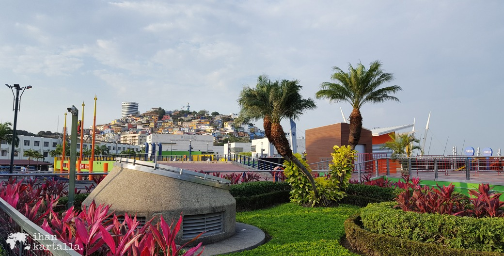 13-9-ecuador-guayaquil-banneri