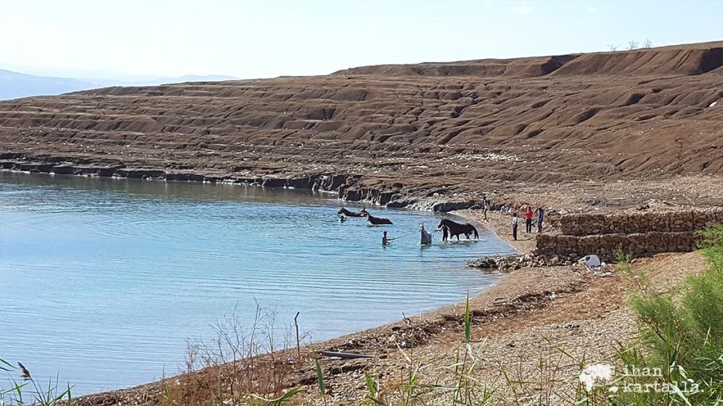 1-4-jordan-dead-sea-beach-3