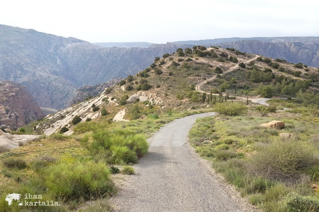 2-4-jordan-dana-biosphere-reserve-road-to-camp