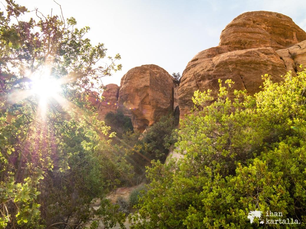 2-4-jordan-dana-biosphere-reserve-sunset