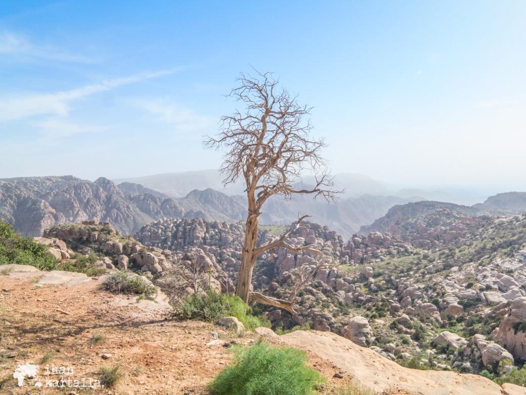 2-4-jordan-dana-biosphere-reserve-view-2