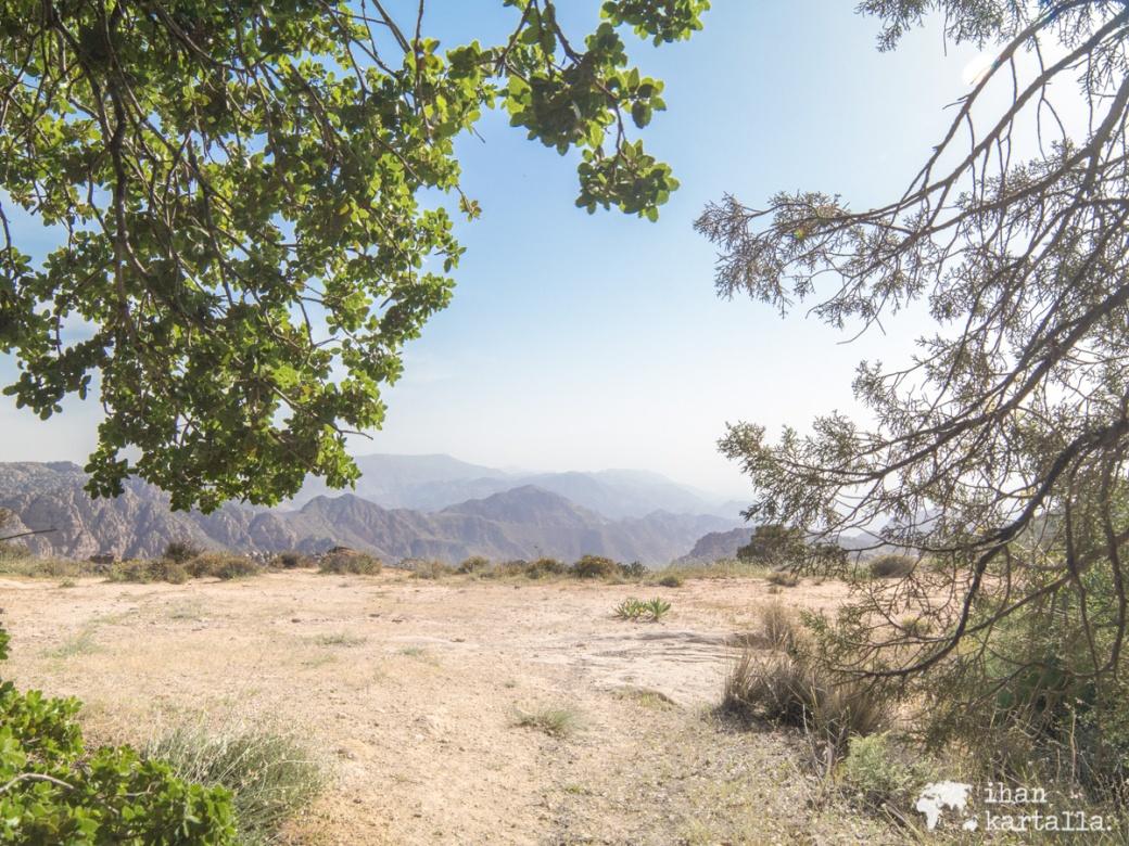 2-4-jordan-dana-biosphere-reserve