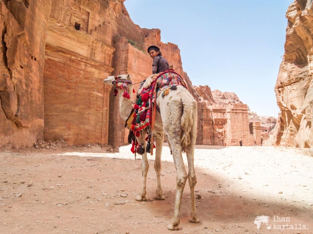 4-4-jordan-petra-camel-boy
